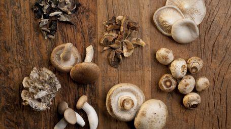 Funghi orientali, una vera medicina naturale