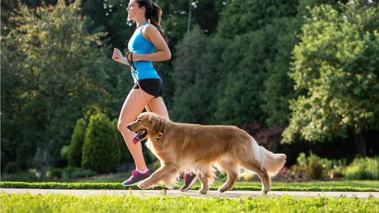 Fitness: le attività da fare con il cane