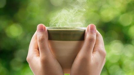 tazza fumante tra le mani, non si vede il contenuto, fondo verde