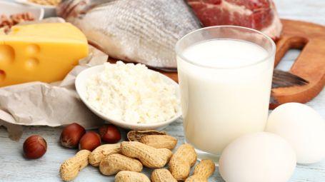 Gli alimenti più ricchi di proteine