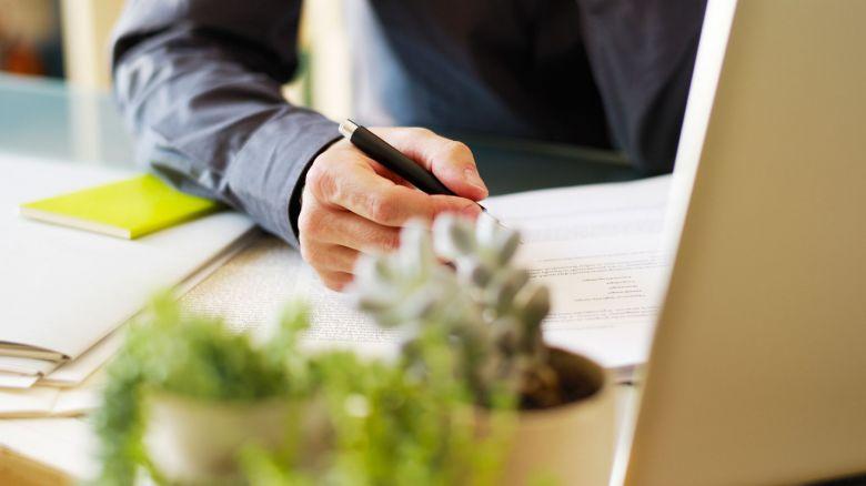 Piante Ufficio Stress : Arredamento per ufficio verde da interno