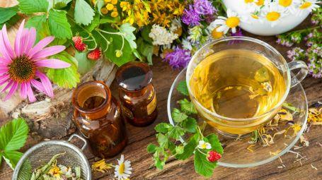 Detox: 5 soluzioni green efficaci
