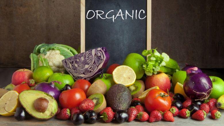 dieta probiotica 13 giorni