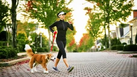 Allenarsi con il cane: i vantaggi e il programma ad hoc
