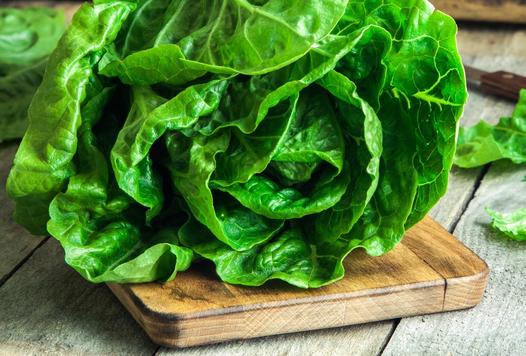 insalate con lattuga per dimagrire