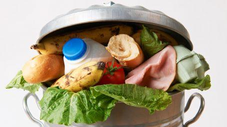 Giornata mondiale dell'alimentazione, a Bologna contro gli sprechi