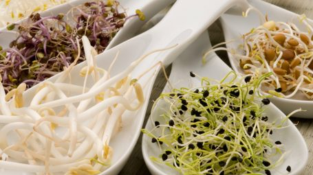 Germogli: quali mangiare e come cucinarli