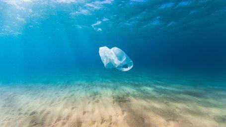 Mare con busta di plastica
