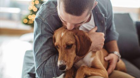 cane abbracciato da padrone