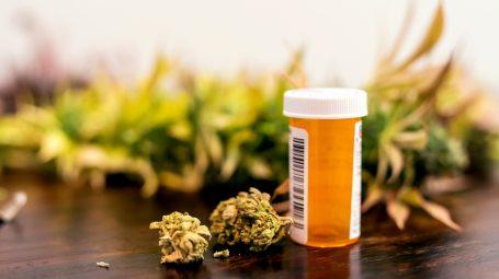 Cannabis terapeutica: come agisce e quali sono gli effetti collaterali