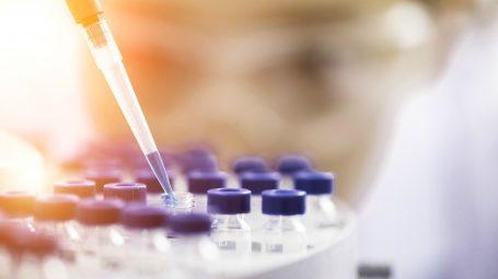 Cellule staminali: che cosa sono e cosa curano