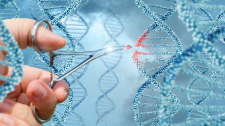 Lotta ai tumori: la nuova molecola che rivoluzionerà le cure
