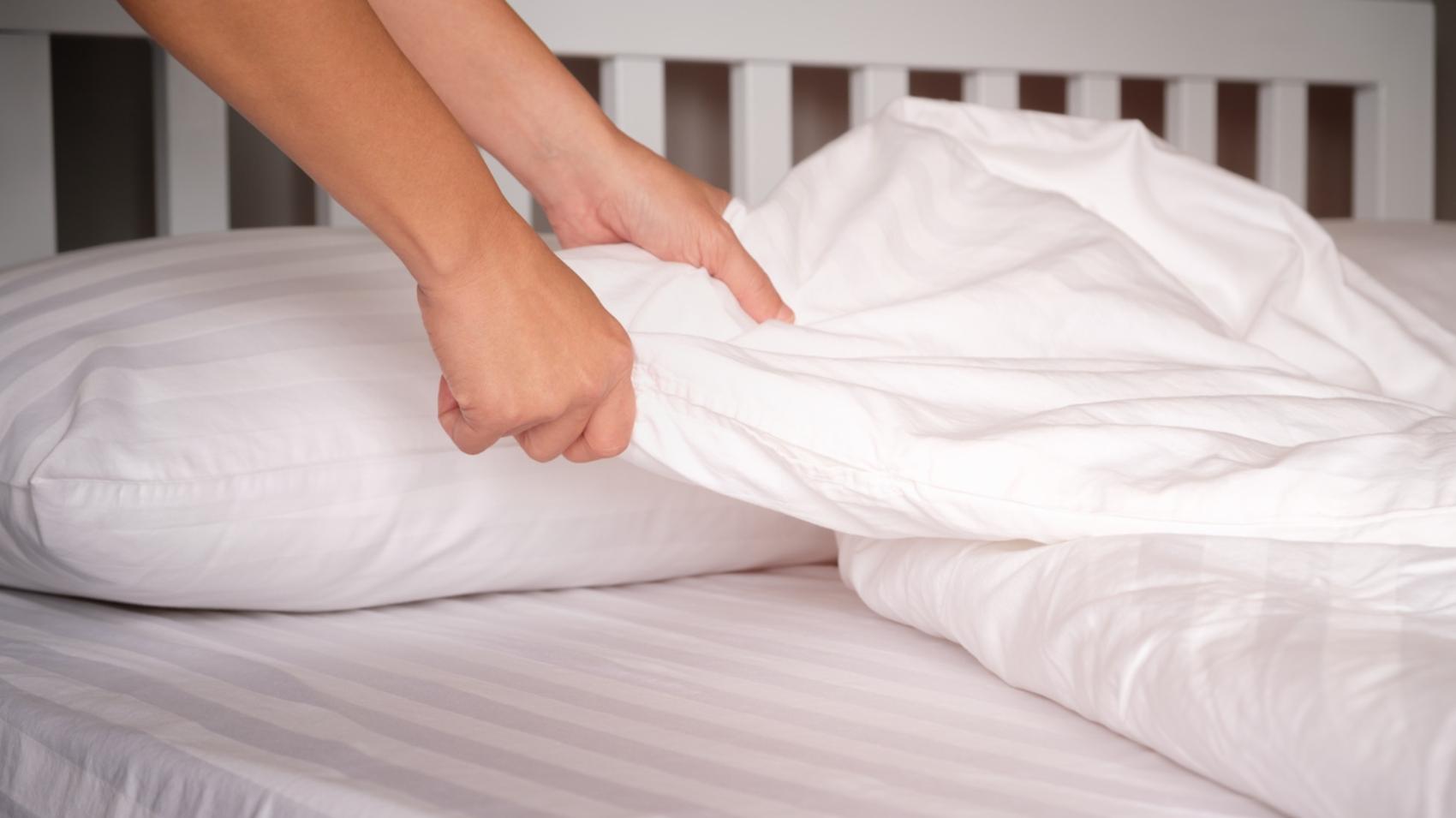 Come Uccidere Acari Della Polvere come eliminare gli acari dal letto?