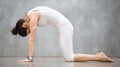 Mal di schiena: gli esercizi per rinforzare il core