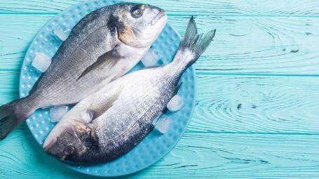 Pesce sì, ma sostenibile: quale preferire
