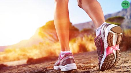 Calze per il walking: le 4 migliori