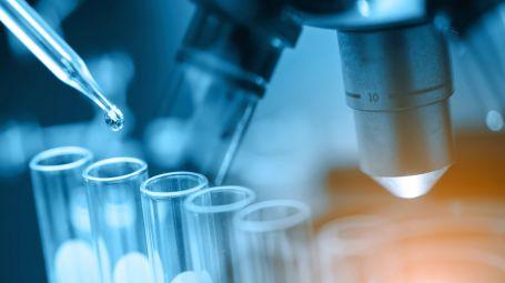 Nobel per la medicina alla scoperta del virus dell'epatite C