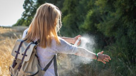 Le zanzare possono trasmettere il Coronavirus?